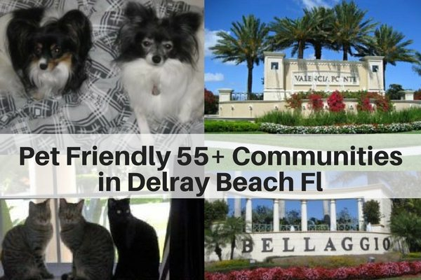 Pet Friendly 55+ Communities in Delray Beach FL
