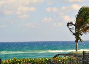 waterfront condos in boca raton florida that allow dogs and cats