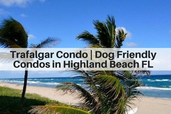 Trafalgar Condo | Dog Friendly Condos in Highland Beach FL