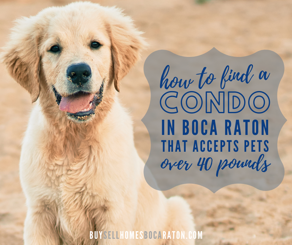 How to Find a Condo for Sale in Boca Raton That Accepts Pets Over 40 Pounds
